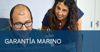 Garantía Taller Marino